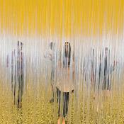 People Interaction Jesus Rafael Soto Museum Fine Arts Houston Simply Amazing